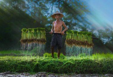 Vietnam tour 10 days