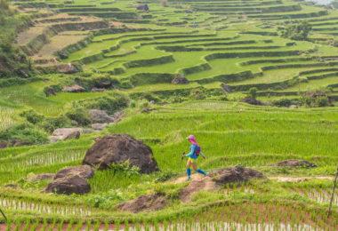 Pu Luong: Travel, tours, trekking & Homestay.